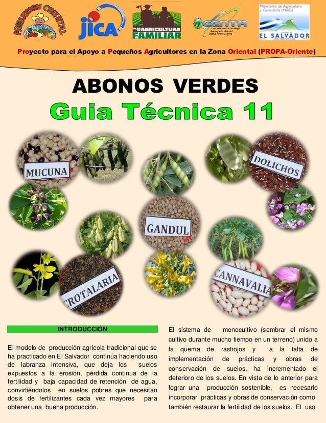 Proyecto para el Apoyo a Pequeños Agricultores en la Zona Oriental (PROPA-Oriente)                     ABONOS VERDES      ...