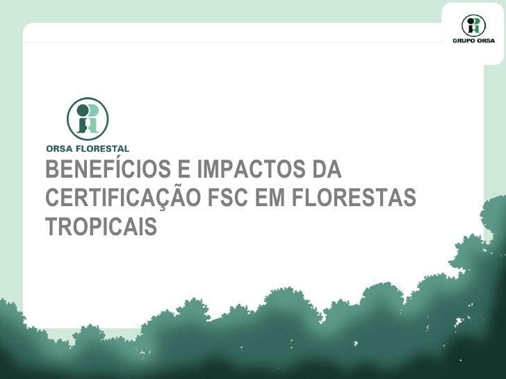 BENEFÍCIOS E IMPACTOS DA CERTIFICAÇÃO FSC EM FLORESTAS TROPICAIS