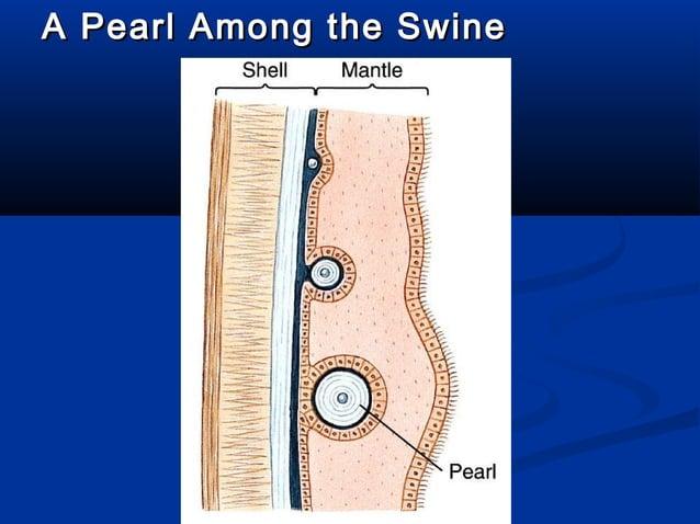 A Pearl Among the SwineA Pearl Among the Swine
