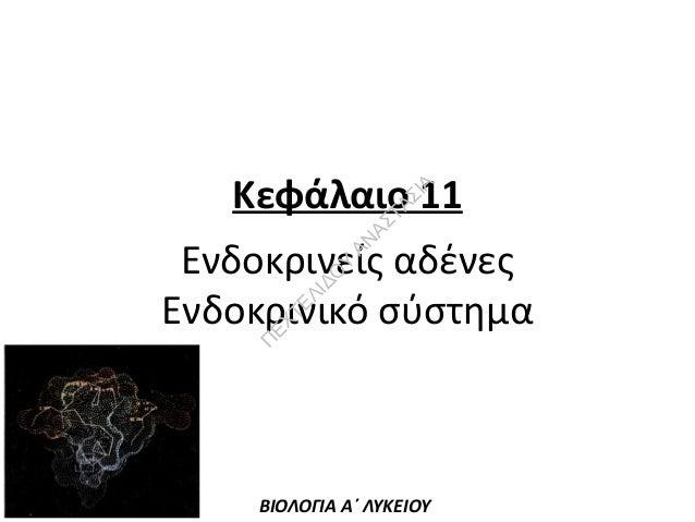 ΑΣ  ΤΑ Σ  ΙΑ  Κεφάλαιο 11  Π  ΕΧ  ΤΕ ΛΙ ΔΟ Υ  ΑΝ  Ενδοκρινείς αδένες Ενδοκρινικό σύστημα  ΒΙΟΛΟΓΙΑ Α΄ ΛΥΚΕΙΟΥ