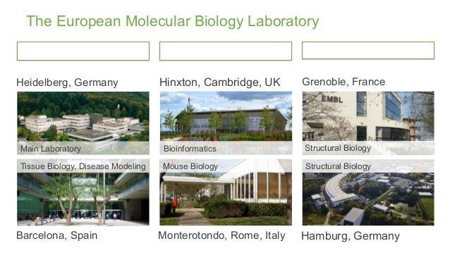 The European Molecular Biology Laboratory Heidelberg, Germany Main Laboratory Barcelona, Spain Tissue Biology, Disease Mod...