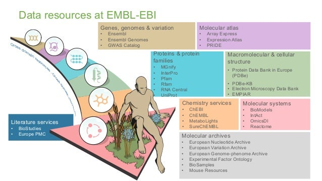 Literature services • BioStudies • Europe PMC Chemistry services • ChEBI • ChEMBL • MetaboLights • SureChEMBL Macromolecul...