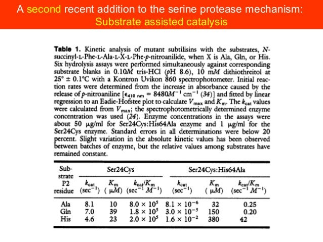 Serine hydrolases: proteases and other enzymesAsparaginaseSerine proteasesEsterasePenicillin acylaseβ-lactamase