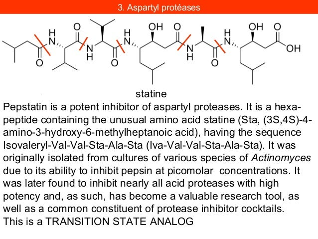 Proposed mechanism of amide, true peptide, and ester bond hydrolysis by proteasomes andmechanism of their inactivation by ...