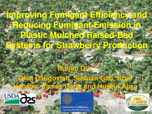 Improving Fumigant Efficiency and Reducing Fumigant Emission in Plastic Mulched Raised-Bed Systems for Strawberry Producti...