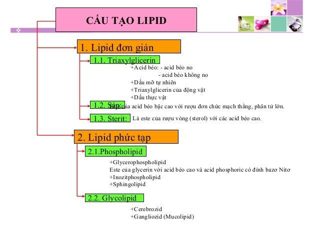 CẤU TẠO LIPID 1. Lipid đơn giản 1.1. Triaxylglicerin 2. Lipid phức tạp 2.1.Phospholipid 2.2. Glycolipid 1.2. Sáp: 1.3. Ste...