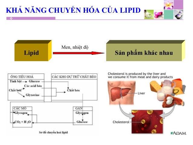 KHẢ NĂNG CHUYỂN HÓA CỦA LIPID Lipid Sản phẩm khác nhau Men, nhiệt độ