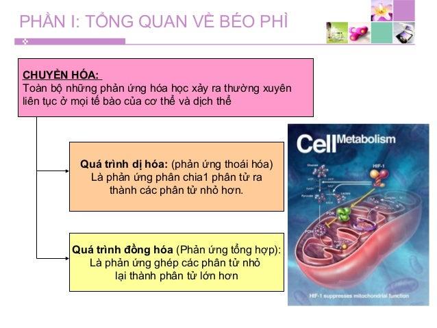 PHẦN I: TỔNG QUAN VỀ BÉO PHÌ CHUYỂN HÓA: Toàn bộ những phản ứng hóa học xảy ra thường xuyên liên tục ở mọi tế bào của cơ t...