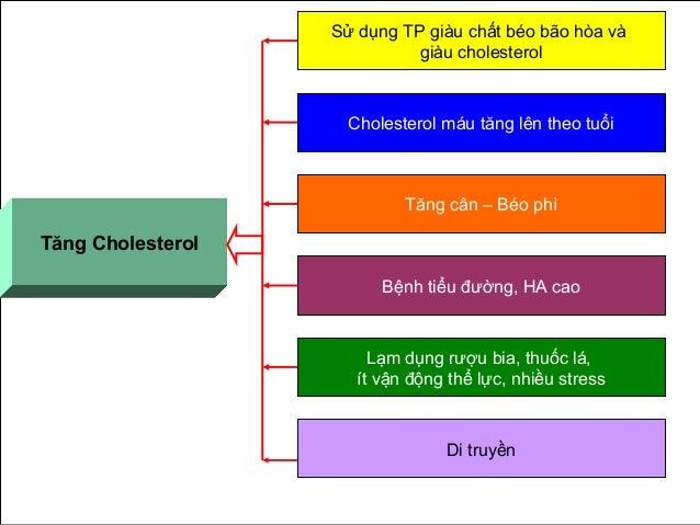 Tăng Cholesterol Sử dụng TP giàu chất béo bão hòa và giàu cholesterol Cholesterol máu tăng lên theo tuổi Tăng cân – Béo ph...