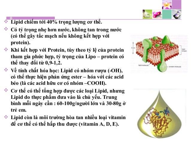  Lipid chiếm tới 40% trọng lượng cơ thể.  Có tỷ trọng nhẹ hơn nước, không tan trong nước (có thể gây tắc mạch nếu không ...