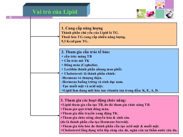 Vai trò của Lipid 1. Cung cấp năng lượng Thành phần chủ yếu của Lipid là TG. Thoái hóa TG cung cấp nhiều năng lượng. 9,3 K...