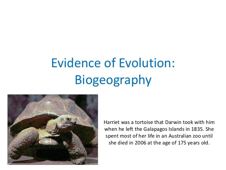 Evidence of Evolution:    Biogeography         Harriet was a tortoise that Darwin took with him         when he left the G...