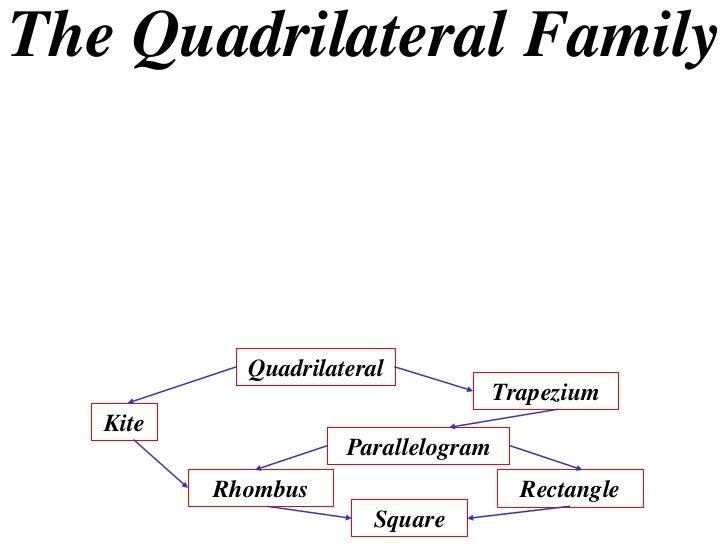 The Quadrilateral Family            Quadrilateral                                     Trapezium   Kite                    ...