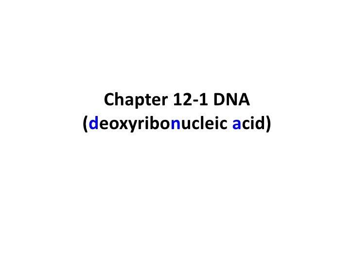 Chapter 12-1 DNA(deoxyribonucleic acid)