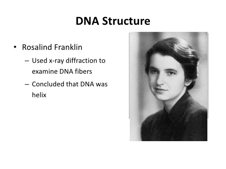 Questions:• 20% A in DNA strands, how many C ?•   A=T=20%,•   A+T+G+C=100%•   G=C,•   C=30%