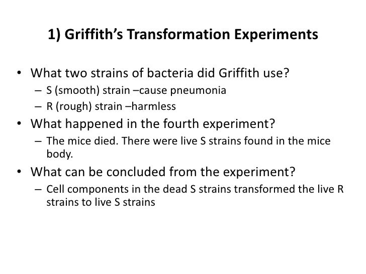 1) Griffith's Transformation Experiments• What two strains of bacteria did Griffith use?   – S (smooth) strain –cause pneu...