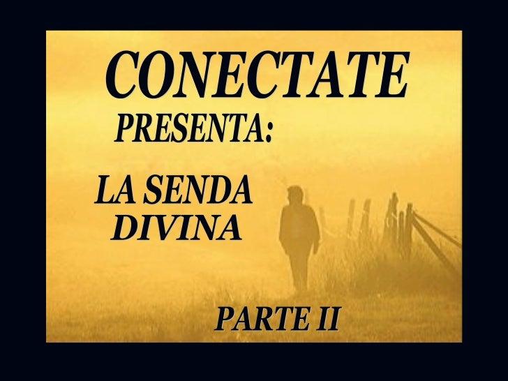 CONECTATE PRESENTA: LA SENDA  DIVINA PARTE II