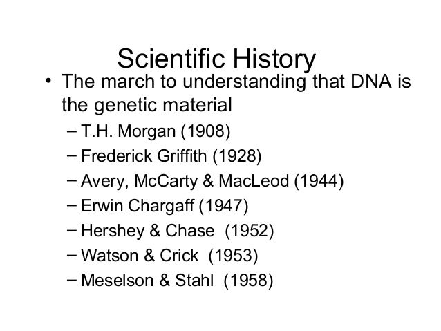 12 1 Notes Dna The Genetic Material