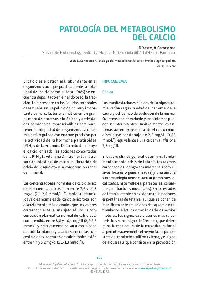 Dieta mediterránea  Consejos sobre cómo ser extra productiva