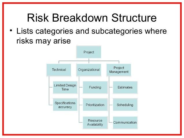 12 Project Risk Management