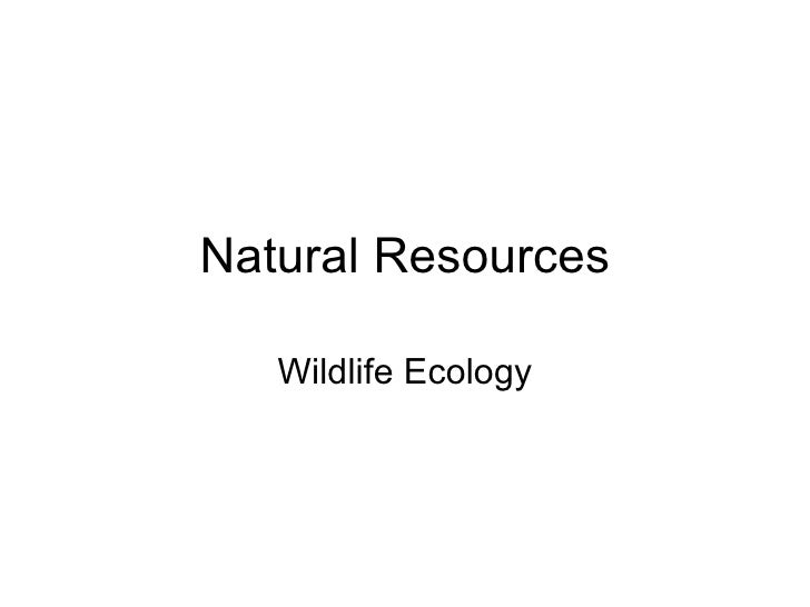 Natural Resources Wildlife Ecology