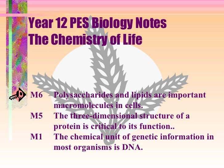 Year 12 PES Biology Notes The Chemistry of Life M6 Polysaccharides and lipids are important macromolecules in cells. M5  T...