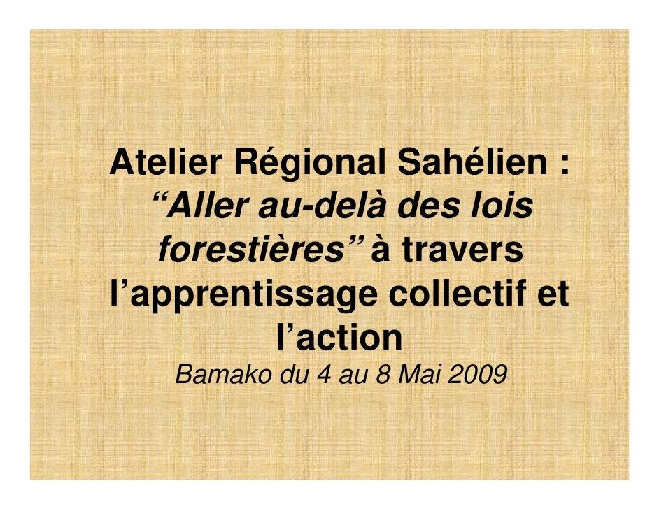 """Atelier Régional Sahélien :    """"Aller au-delà des lois    forestières"""" à travers l'apprentissage collectif et            l..."""