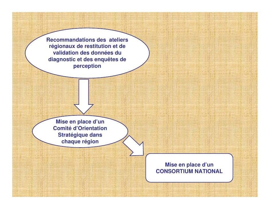 Recommandations des ateliers  régionaux de restitution et de    validation des données du  diagnostic et des enquêtes de  ...
