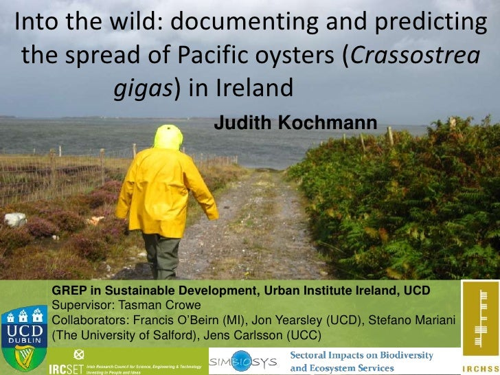 Into the wild: documenting and predicting the spread of Pacific oysters (Crassostrea         gigas) in Ireland            ...