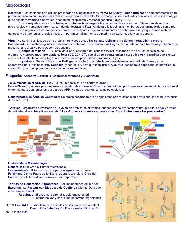 Microbiología  Bacterias: Las bacterias son células procariotas distinguidas por su Pared Celular y Región nuclear no comp...