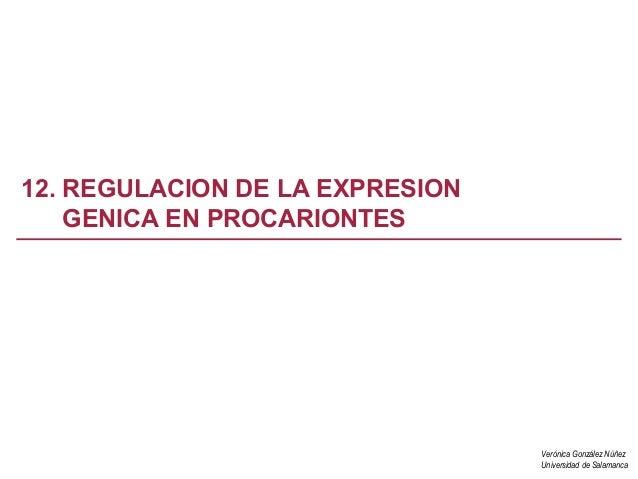 Verónica González NúñezUniversidad de Salamanca12. REGULACION DE LA EXPRESIONGENICA EN PROCARIONTES