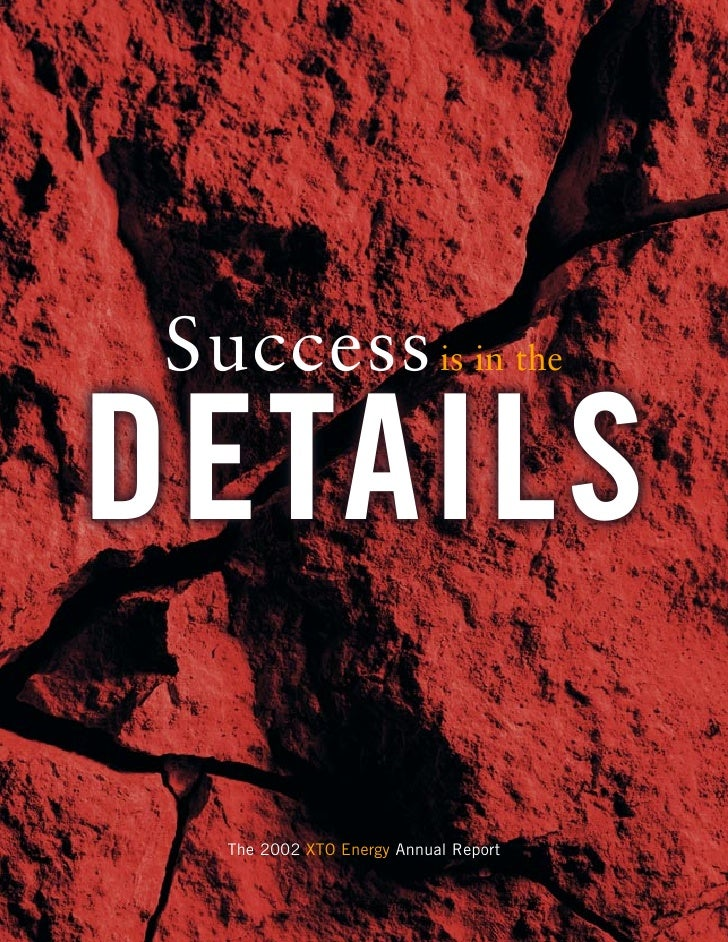 Success is in the DETAILS    The 2002 XTO Energy Annual Report