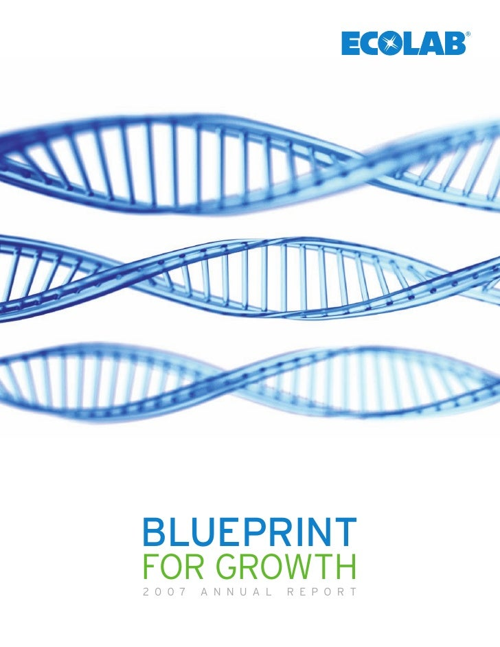 BLUEPRINT FOR GROWTH 2007   ANNUAL   REPORT