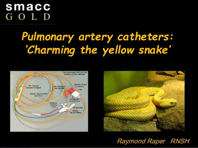 Pulmonary artery catheters: Charming the yellow snake Pulmonary artery catheters: 'Charming the yellow snake' Raymond Rape...