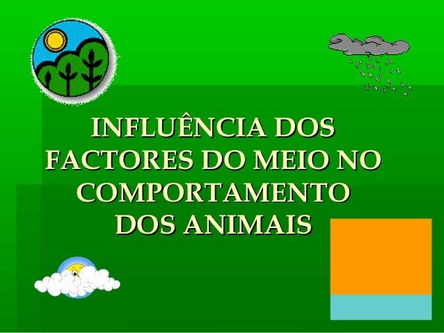 INFLUÊNCIA DOSINFLUÊNCIA DOS FACTORES DO MEIO NOFACTORES DO MEIO NO COMPORTAMENTOCOMPORTAMENTO DOS ANIMAISDOS ANIMAIS