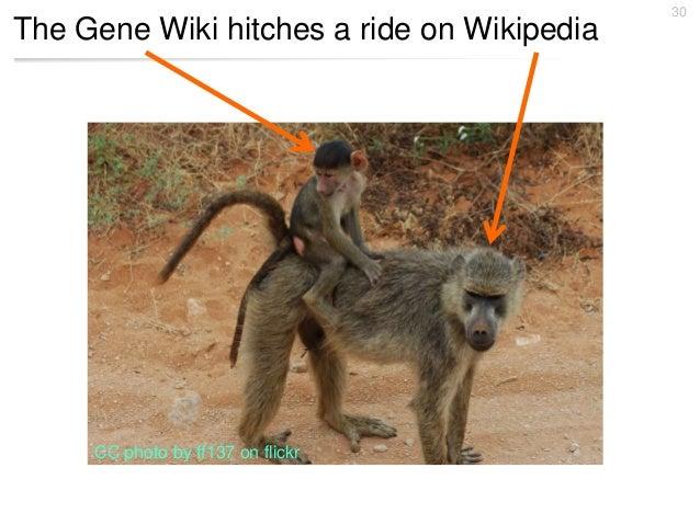 Gene Wiki at Phenotype RCN annual meeting