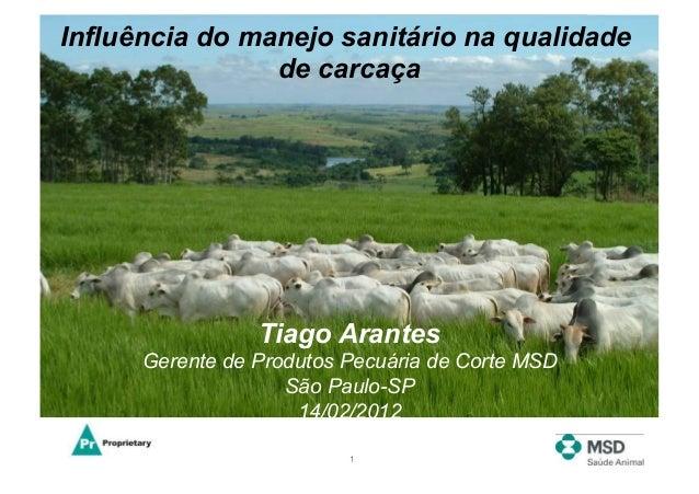 Influência do manejo sanitário na qualidade                de carcaça                 Tiago Arantes      Gerente de Produt...