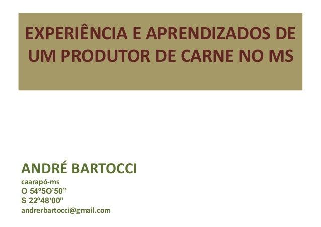 """EXPERIÊNCIA E APRENDIZADOS DE UM PRODUTOR DE CARNE NO MS ANDRÉ BARTOCCI caarapó-‐ms O 54º5O'50""""..."""