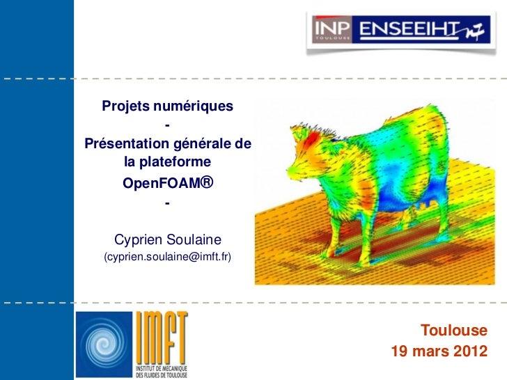 Projets numériques            -Présentation générale de     la plateforme     OpenFOAM®          -    Cyprien Soulaine  (c...