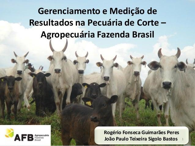 Gerenciamento e Medição deResultados na Pecuária de Corte –  Agropecuária Fazenda Brasil                  Rogério Fonseca ...