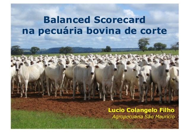 Balanced Scorecardna pecuária bovina de corte                Lucio Colangelo Filho                 Agropecuária São Maurício