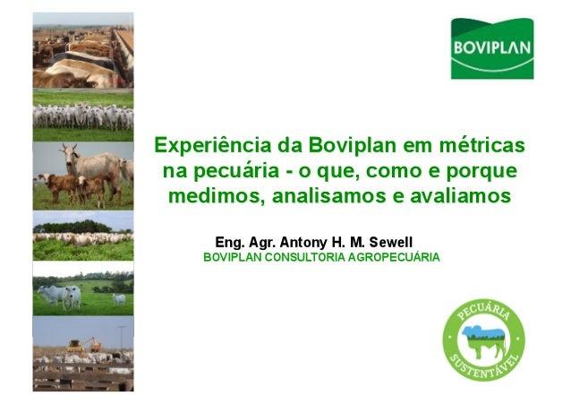 BRASILDestaque mundial na produção de bovinos de cortemaior exportador de carnes bovinassegundo maior produtorMas,    ...