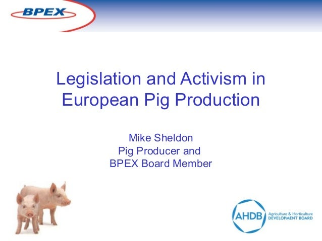 Legislation and Activism in European Pig Production Mike Sheldon Pig Producer and BPEX Board Member