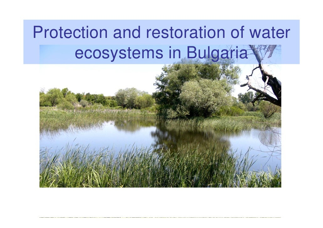 Protection and restoration of water     ecosystems in Bulgaria