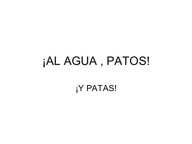 ¡AL AGUA , PATOS! ¡Y PATAS!