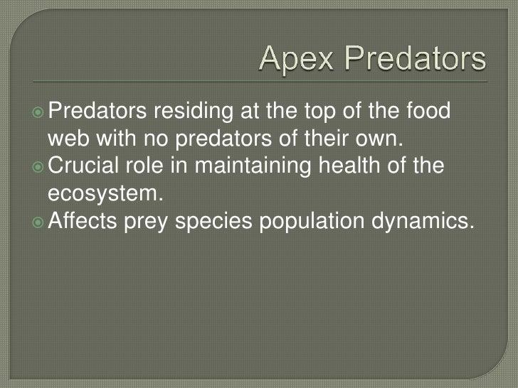 Anal wildlife tourist - 3 part 1