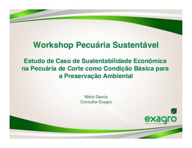 Workshop Pecuária Sustentável Estudo de Caso de Sustentabilidade Econômicana Pecuária de Corte como Condição Básica para ...