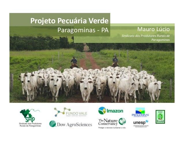 Projeto Pecuária Verde           Paragominas -‐ PA                   Mauro Lúcio                         ...