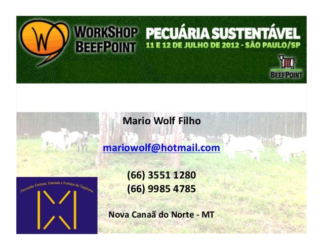 Mario Wolf Filho mariowolf@hotmail.com         (66) 3551 1280         (66) 9985 4785  Nova Canaã d...