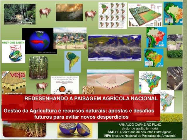 ARNALDO CARNEIRO FILHO              diretor de gestão territorial   SAE-PR (Secretaria de Assuntos Estratégicos)INPA (Inst...